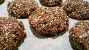choc grain free biscuit recipe